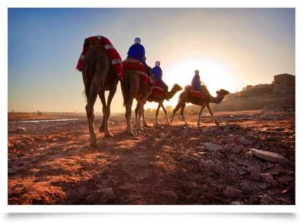 Arabic Homeschool Curriculum | Rosetta Stone® Homeschool