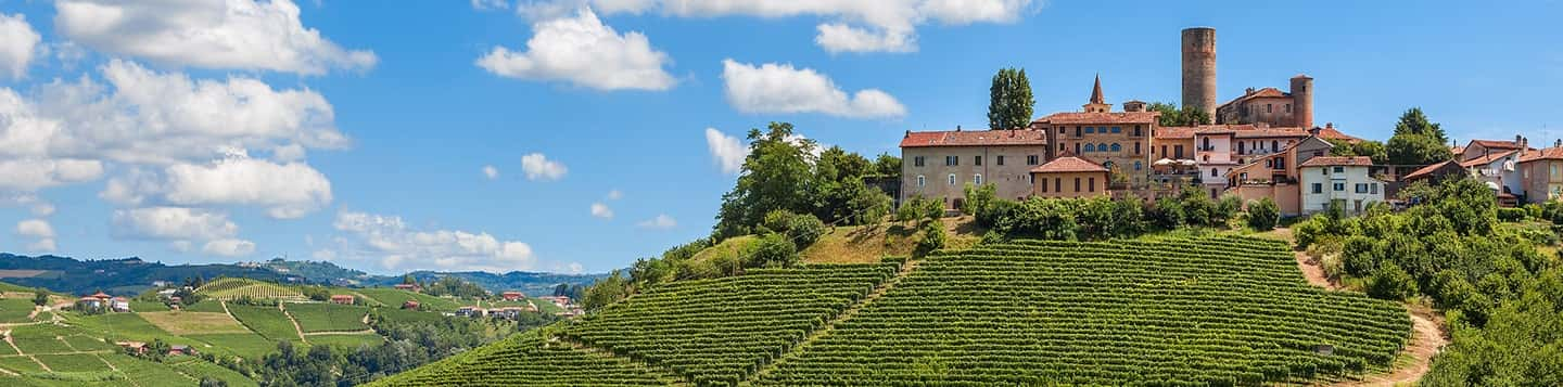 View of the wine country in Italy header of Rosetta Stone Learn Italian App page