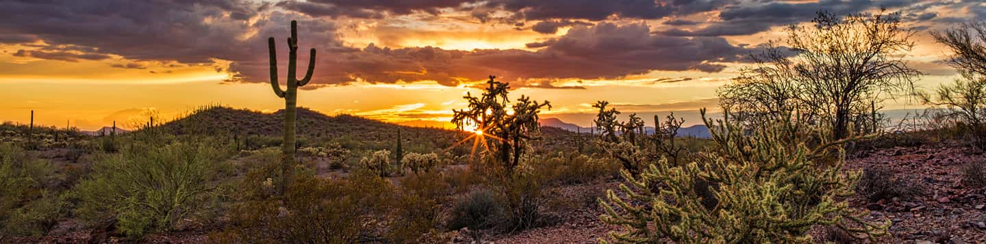 Spanish desert sunrise as header of We Have In Spanish page