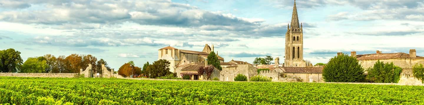 bordeaux vineyards view header of Rosetta Stone Best Language Learning App page